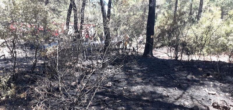 Otomobil yandı, alevler ormana sıçradı