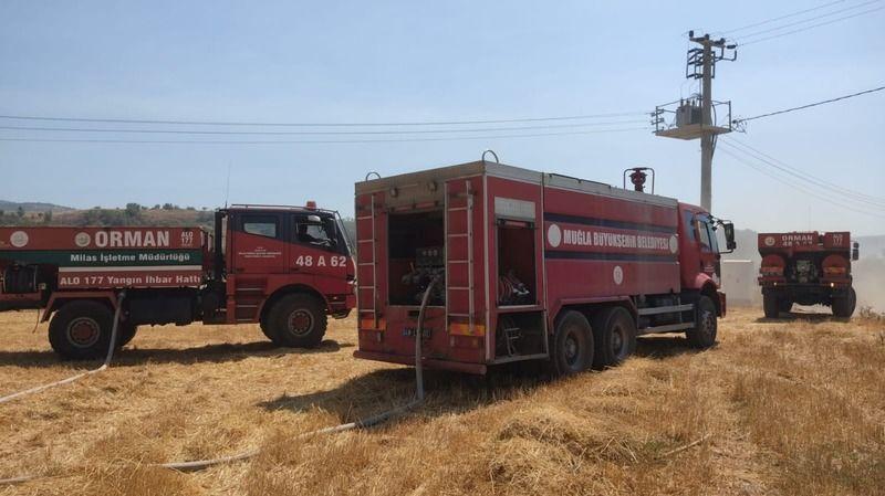 Ormanlık alanda başlayan yangın tarım arazilerine sıçradı