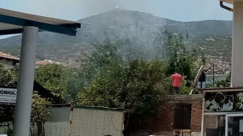 Milas'ta yangın başladı