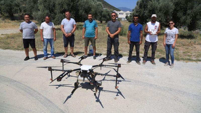 Milas'ta ilk: Tarım alanları zirai drone ile ilaçlandı