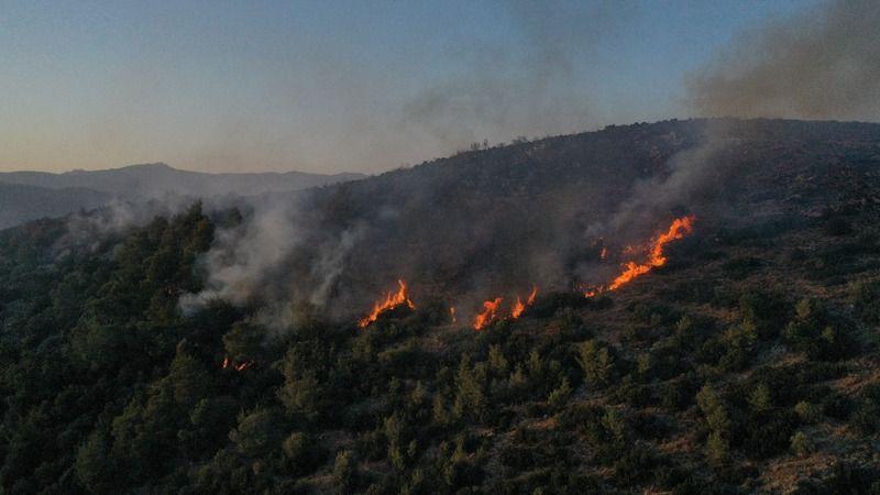 Milas'ta makilik alandaki yangın kısmen kontrol altına alındı