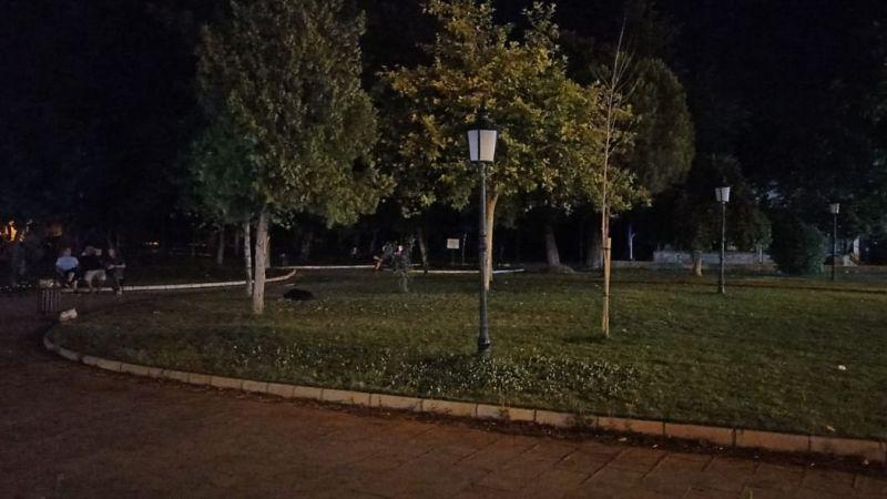 Bulvar ve şehir parkı karanlığa mahkum!
