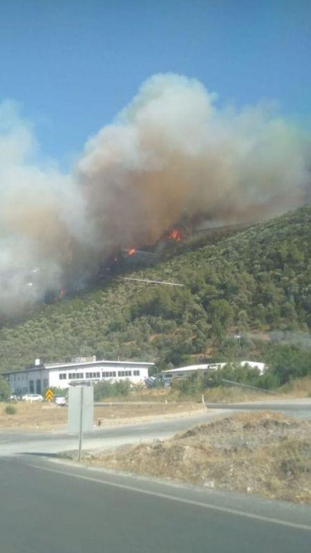 İki ayrı mahallede de yangın başladı