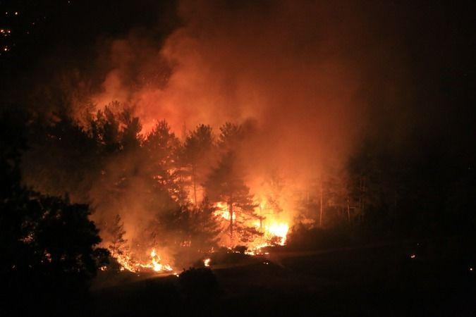 Milas'taki yangın Bodrum'a sıçradı
