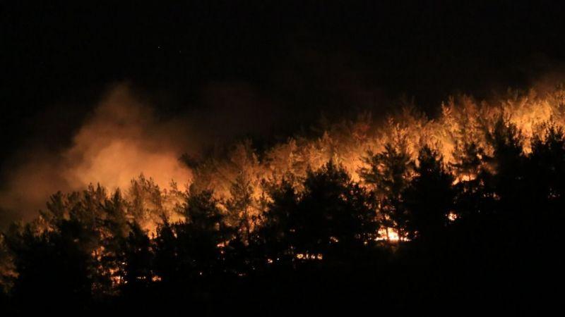Milas Kıyıkışlacık'ta yangın başladı