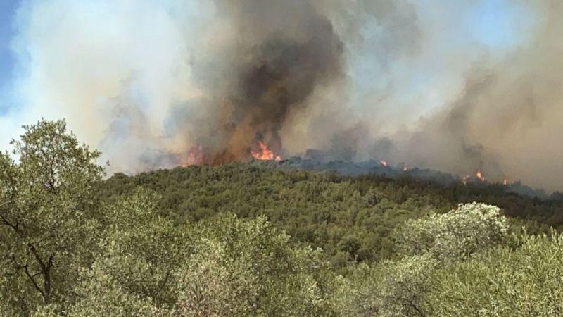 Yangın sitelere yaklaştı
