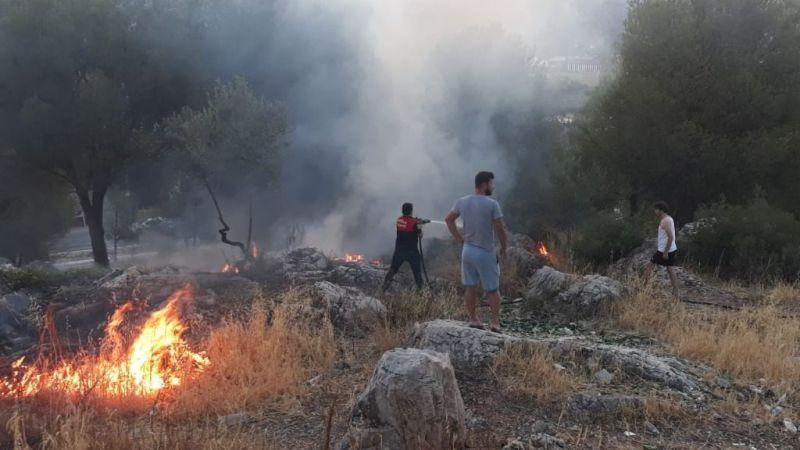 Milas merkezde zeytinlik alanda yangın