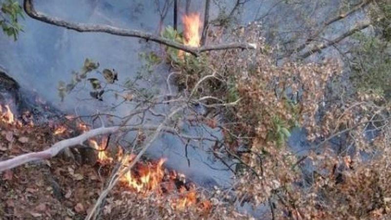 Ilbıra Dağları'nda yangın çıktı