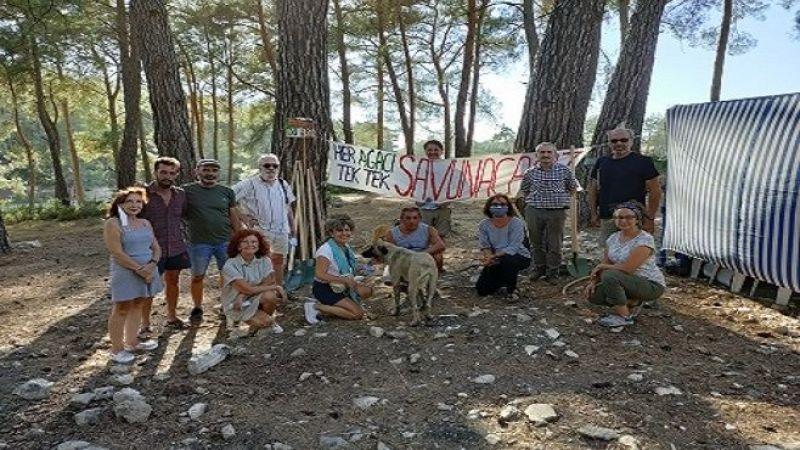 Türkiye Yanıyor, Orman Bakanı Sadece Bakıyor
