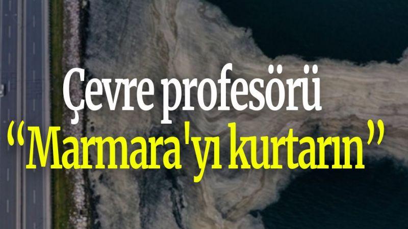 """Çevre profesörü: """"Marmara'yı kurtarın"""""""