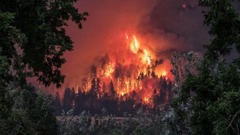 Yangınlar aynı anda nasıl başladı? Uzmanlar 4 nedeni sıraladı!