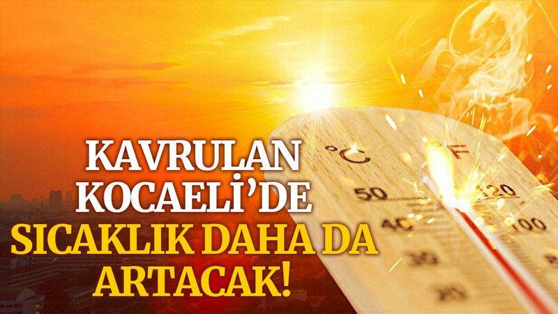 Kavrulan Kocaeli'de, sıcaklık daha da artacak!