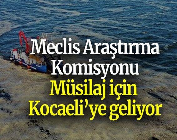 Meclis Araştırma Komisyonu Müsilaj için Kocaeli'ye geliyor