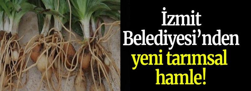 İzmit Belediyesinden yeni tarımsal hamle!