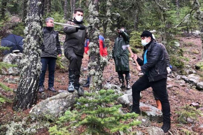 Ormanların gençleştirme çalışmaları devam ediyor