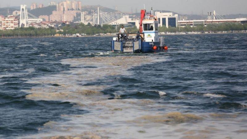 Kocaeli Haber - İzmit Körfezi'nde 50 Günde 150 Ton Deniz Salyası Toplandı
