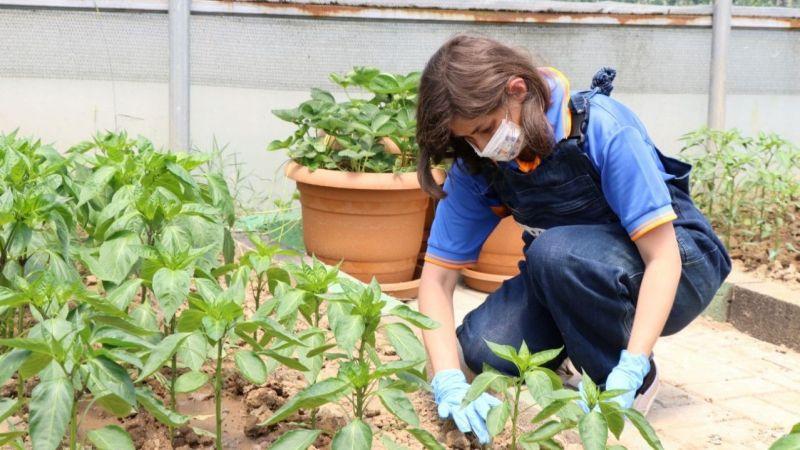 Kocaeli Haber - Özel Öğrencilere Tarımsal Rehabilitasyon Desteği