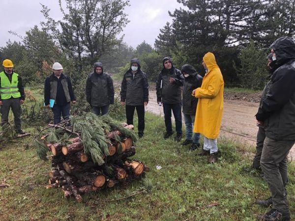 Orman muhafaza memurlarına zararlılarla mücadele eğitimi