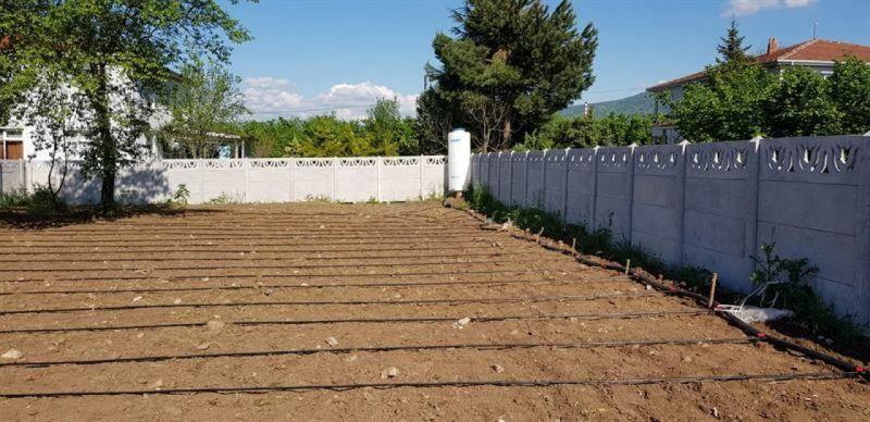 118 bahçede uygulamalı projelerin dikimleri başladı