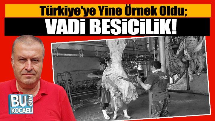 Türkiye'ye Yine Örnek Oldu; Vadi Besicilik