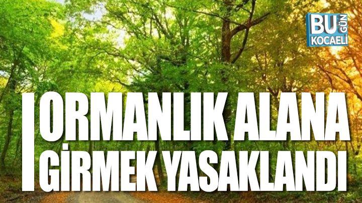Kocaeli haber - Kocaeli'de ormanlık alanlara girmek yasaklandı