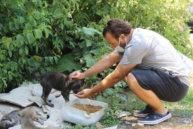 Kocaeli Haber - Ormanlara girişler yasaklanınca hayvanlar için harekete geçtiler