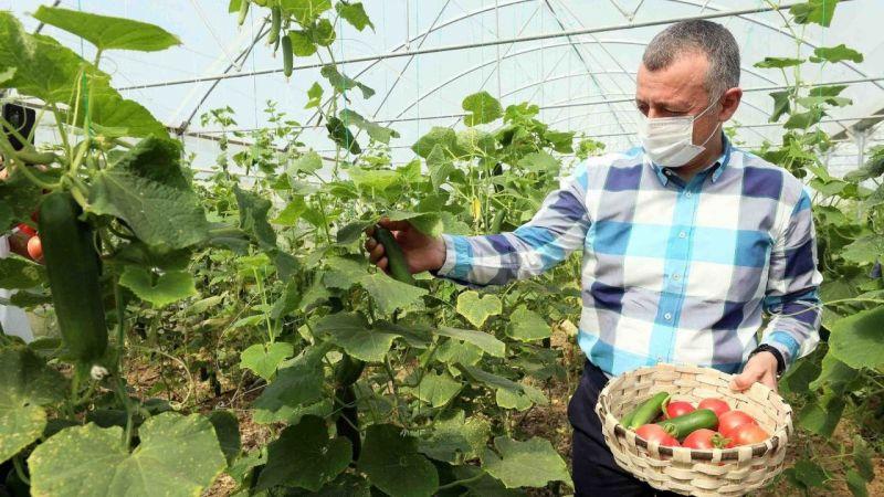Kocaeli Haber - Bayraktar köyünde ilk hasadı Büyükakın yaptı