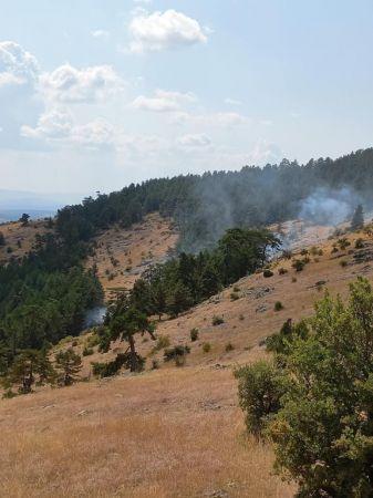 Bolu'da 1 hektarlık orman yangında zarar gördü