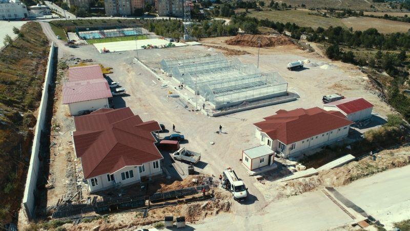 Kastamonu Belediyesi yılda 100 bin ata tohumu fidesi üretecek