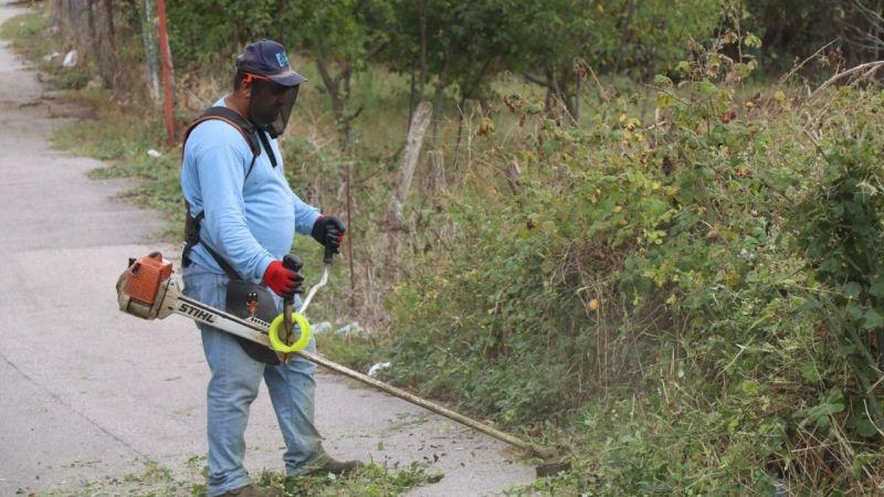Kocaeli Haber - İzmit'te park ve yeşil alanlar tırpan çalışmalarıyla temizleniyor
