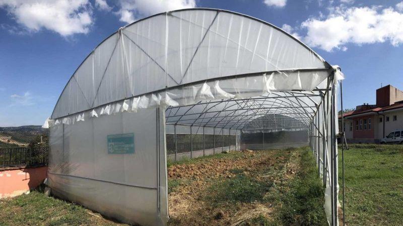 Kocaeli Haber - Özel bireyler, serada sebze yetiştirilerek rehabilite ediliyor