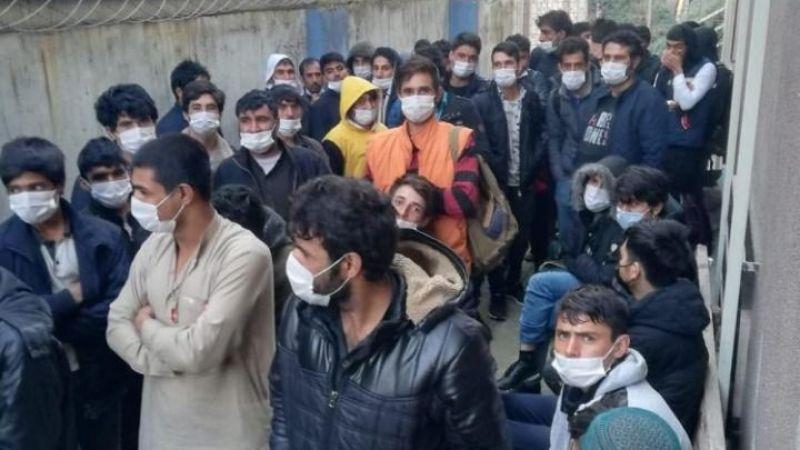 90 kaçak göçmen polis operasyonunda yakalandı