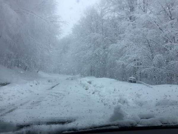 Gölcük'te kar yağışı etkisini sürdürüyor