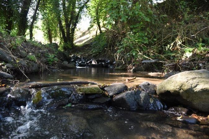 Damlar Vadisi Millet Bahçesi ilçeye kazandırılıyor