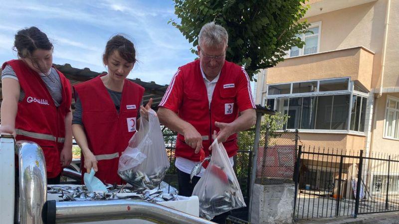 Kızılay Gölcük şubesi 500 kilo istavrit dağıttı