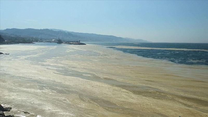 Marmara Denizi'nde yayılan 'deniz salyası' Mudanya sahilini de kapladı