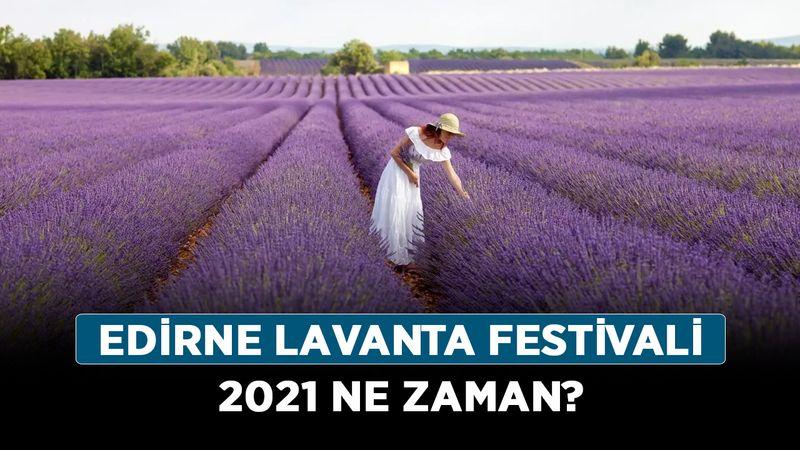 Trakya lavanta festivali başladı mı? Edirne lavanta festivali 2021 ne zaman?