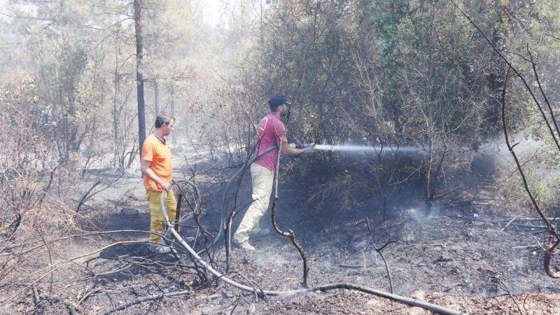 Türkiye'nin yangınla imtihanı