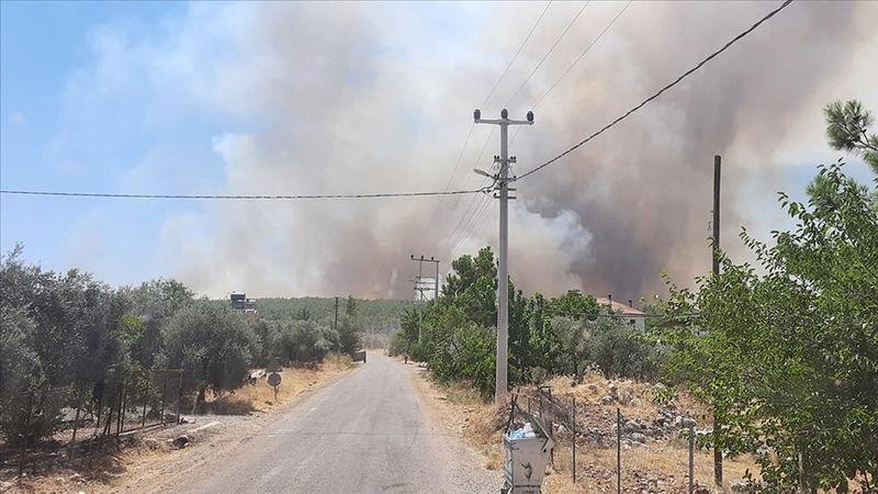 Antalya'nın Demre ilçesinde çıkan orman yangını söndürüldü