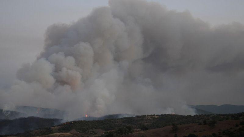 Aydın'da çıkan orman yangınına müdahale devam ediyor