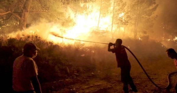 Orman Genel Müdürü Karacabey: 134 yangını kontrol atına aldık, 10'unda çalışmalar sürüyor