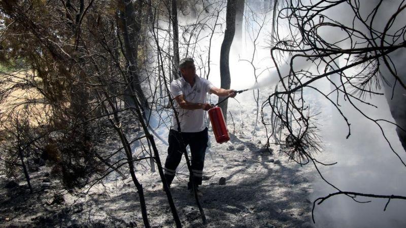 Uşak'ta çıkan orman yangını kontrol altına alındı