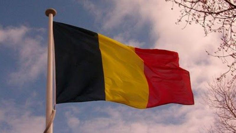 Belçika Dışişleri Bakanlığı: Orman yangınlarından etkilenen Türkiye, İtalya ve Yunanistan ile dayanışma içindeyiz