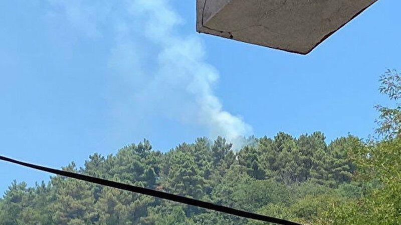 Beykoz'da çıkan orman yangını kontrol altında