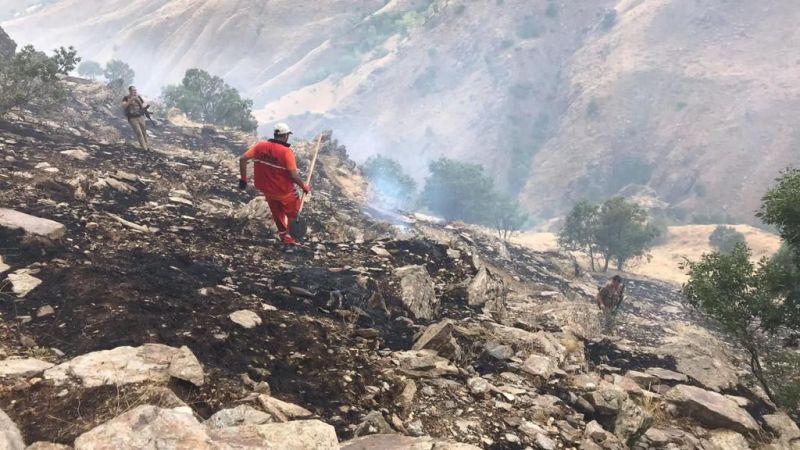 Bingöl'de ormanlık alanda çıkan yangın kontrol altına alındı