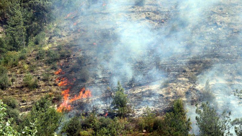 Karabük'te çıkan yangına müdahale ediliyor