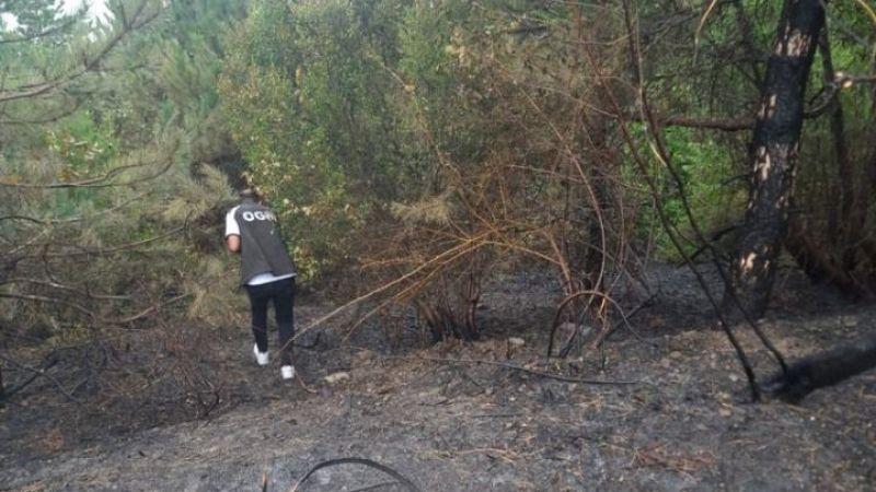 Kastamonu'da çıkan yangın kontrol altına alındı