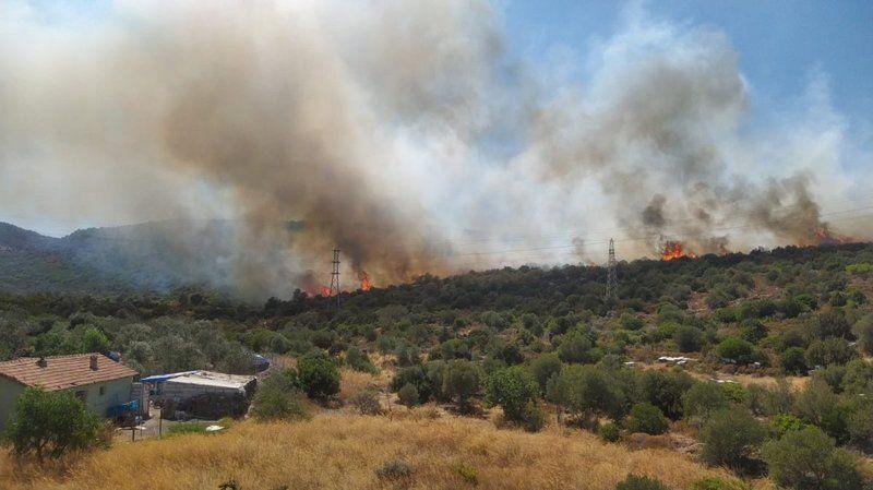 İzmir'in Urla ilçesine bağlı Balıklıova'daki makilik alanda orman yangını çıktı.
