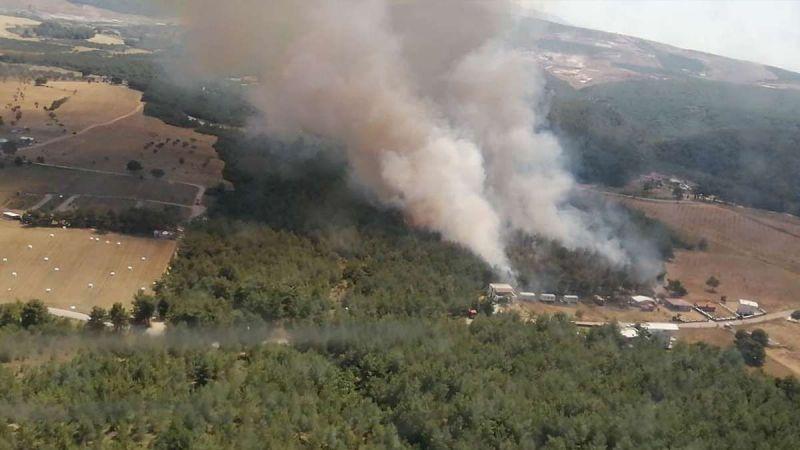 Milas ve Köyceğiz dışındaki tüm yangınlar kontrol altına alındı