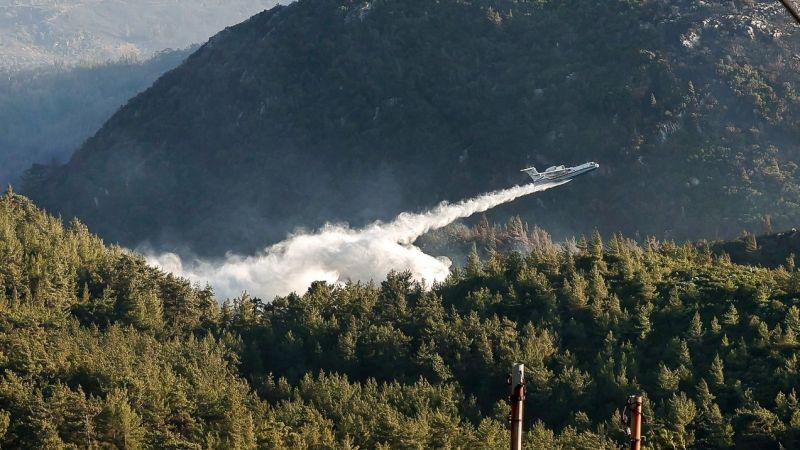 Bekir Pakdemirli: İklim değişikliği orman yangınlarında önemli etkenlerden
